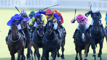Pierata (red cap) gets the better of Osborne Bulls (blue) in the All Aged Stakes.