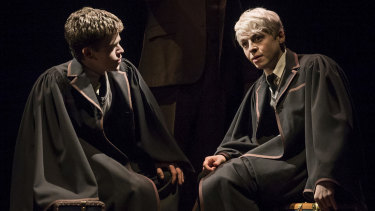 The show picks up where the books and films finished with Harry and Draco's sons, Albus and Scorpius starting at Hogwarts.