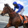 Oliver lands victory aboard Anamoe - his second Caulfield Guineas win, 31 years after his first