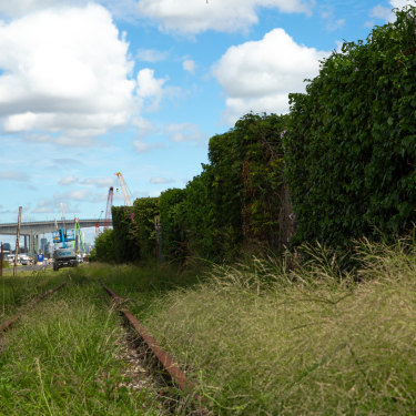 In partnership with industry, Bulimba Creek Catchment Coordinating Committee has launched the Gibson Island Rehabilitation Project.