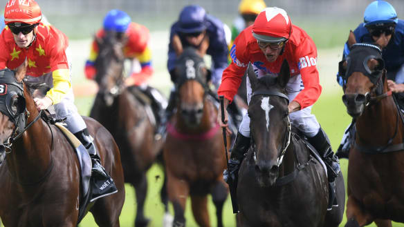 Golden Rose meetings highlights Melbourne's shortcomings