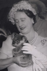 A picture of Princess Charlotte cuddling a koala, as the Queen Mother did at Lone Pine Sanctuary in 1958, could do wonders for Queensland tourism.