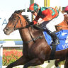 Tips and race-by-race preview for Taree on Monday
