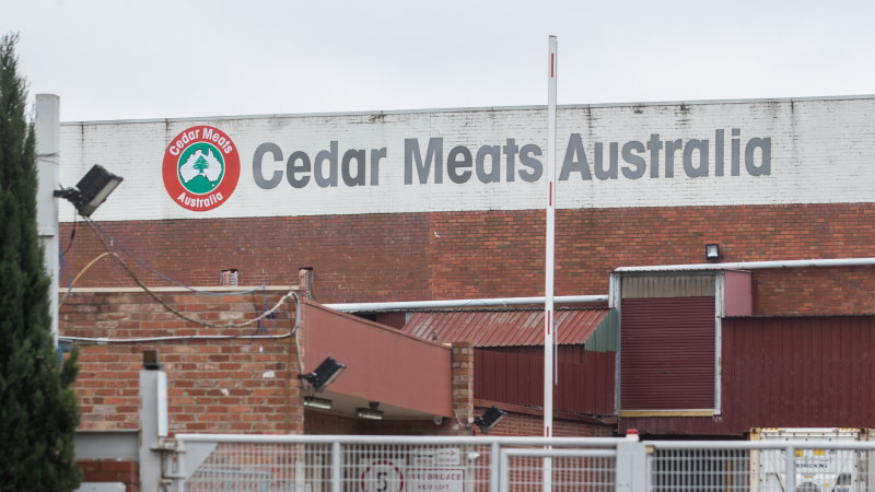 Melbourne abattoir cluster grows – but is it all bad news? – Sydney Morning Herald