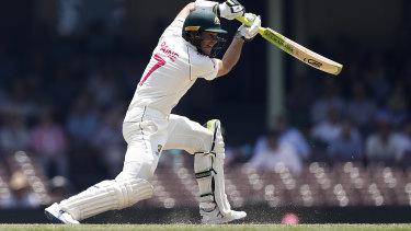 Tim Paine in action in the Test series against New Zealand.
