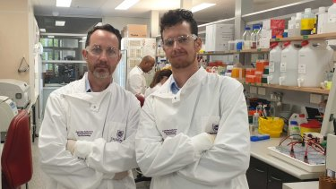 Australian Institute for Bioengineering and Nanotechnology professor Trent Munro and UQ's School of Chemistry and Molecular Biosciences Dr Keith Chappell in the AIBN lab.