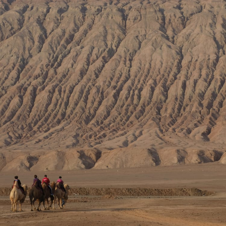 Tourists on camels at the Flaming Mountains in Turpan.