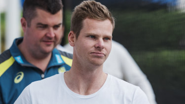 Steve Smith (pictured) and David Warner could return to international cricket via the one-day series against Pakistan.