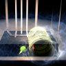 Scientists using 'quantum headphones' to protect delicate data
