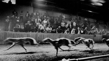 A night race in 1991.