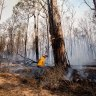 LNP wants inquiry into bushfires that ravaged 38 Queensland homes