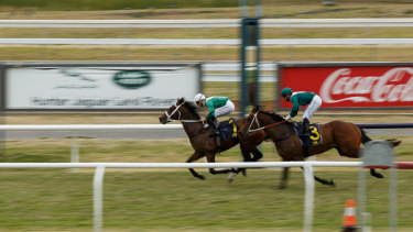 Tamworth is hosting a seven-race card on Monday.
