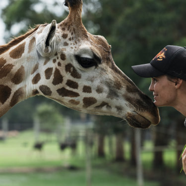 "Mogo Wildlife Park zookeeper Sam Ion with Oni the giraffe. Ion was woken at 6am on New Year's Eve by the news that the Currowan bushfire was heading for the zoo. ""I knew I had to get there,"" she says."