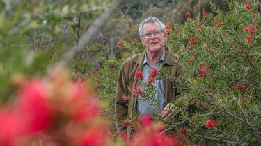 David Flannery, head of ACT Heritage Council, in a  patch of trees on Red Hill that has been listed on the ACT Heritage Register.