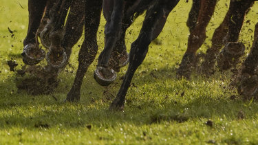 The Tamworth track is rated around a heavy 8.