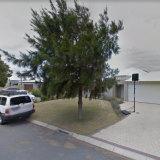 Mr Howard's verge tree.