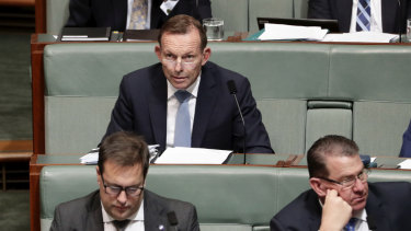 Former prime minister Tony Abbott in question time on Monday.