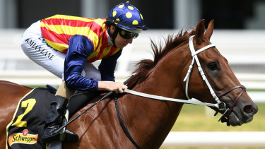 Nature Strip will run in the James Harron slot in The Everest after winning the Moir Stakes.