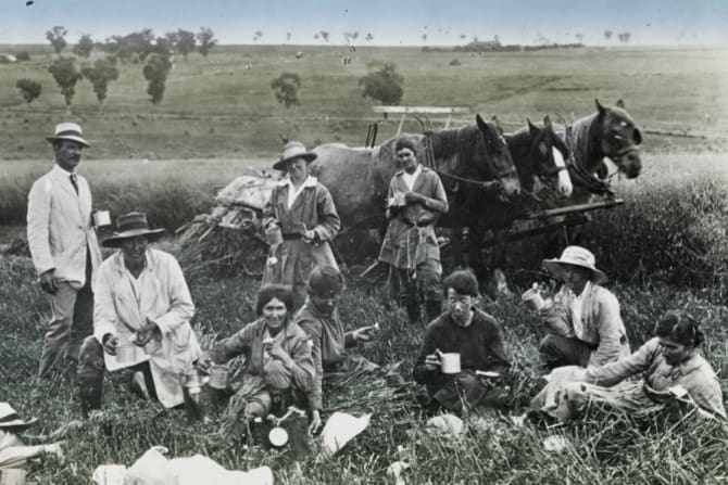 """Women were trained as """"replacement workers"""" at places such as Cowra Experiment Farm."""