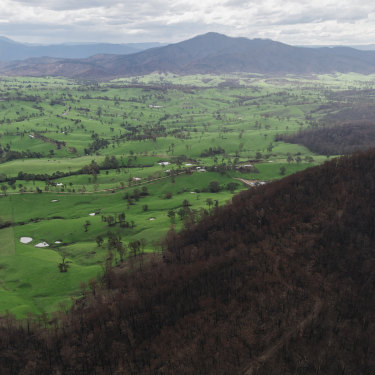 An aerial photo of bushfire affected areas, south of Bodalla, taken from an MRH90 Taipan helicopter.