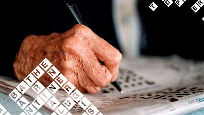 Time to get wise about cryptic crosswords: your how-to ...