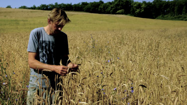 Musician Andy Cato works his fields in Gascony.