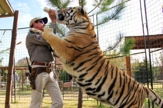 The Netflix series Tiger King, starring Joe Exotic, has become a global sensation.