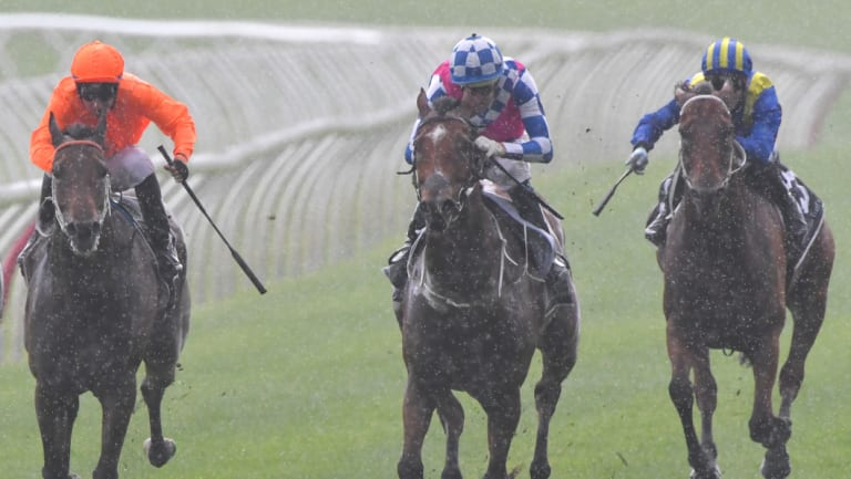 Right as rain: Hugh Bowman rides Fell Swoop (centre) to victory in the Razor Sharp Handicap on Saturday.