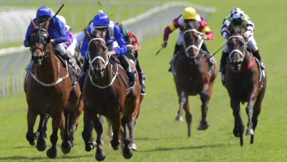 Miracle mare: Hugh Bowman pilots Winx home at Randwick yesterday to claim her third Apollo Stakes and stretch her winning streak to an incredible 30 races.