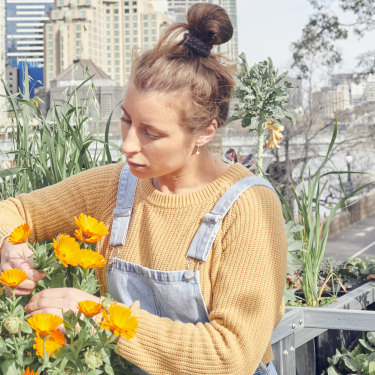"""Jo Barrett picking calendula flowers – the edible petals are used to brighten up salads: """"We should try different dishes that are still really delicious but might come from a more ethical place."""""""