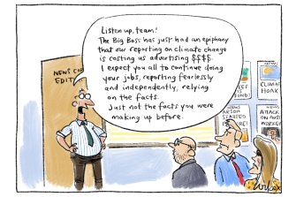 Illustration by Cathy Wilcox