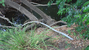 The pipe extracting water from Six Mile Creek to the Riverview Community Garden.