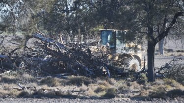 Land clearing on a property in northern NSW in August 2017 after biodiversity laws were weakened.
