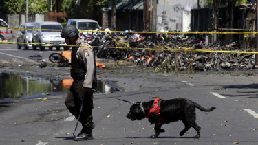 An officer leads a sniffer dog at one of the sites of church attacks in Surabaya.