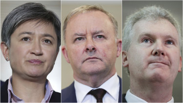 Penny Wong, Anthony Albanese and Tony Burke voiced concerns about the plan.