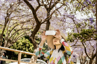 A visitor to McDougall Street photographs the jacaranda trees.