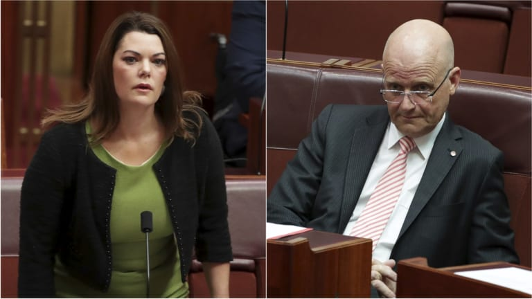 Senator Hanson-Young is suing Senator Leyonhjelm for defamation over comments in subsequent media interviews.