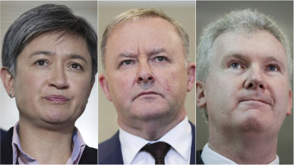 Senior Labor figures including Anthony Albanese argued against anti-corruption watchdog