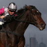 Excuses: Surprise Baby flies home for third last start at Flemington in the Brew Handicap.