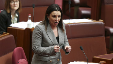 Senator Jacqui Lambie pictured earlier this month.