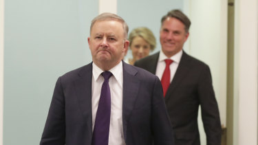 Opposition Leader Anthony Albanese and deputy Labor leader Richard Marles just after he assumed the leadership last year.