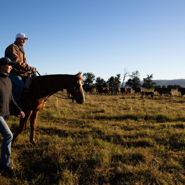 Nic Robertson joins her husband Doug, with their horse Hamish, as they muster cattle on their property near Scone.