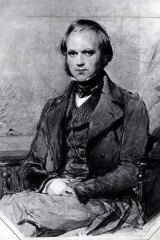 "A young Charles Darwin reported of  Sydney: ""as a place of punishment the object is scarcely gained, but as a means of making men outwardly honest – of converting vagabonds, most useless in one hemisphere, into active citizens in another, and thus giving birth to a new and splendid country – a grand Centre of Civilisation – it has succeeded to a degree perhaps unparalleled in history""."