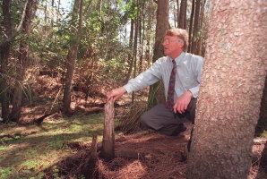 Pittwater mayor Robert Dunn in the wetlands of Warriewood, 1996.