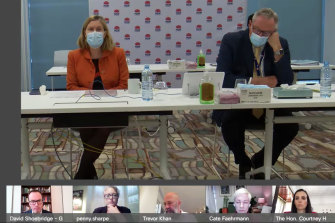 Dr Kerry Chant and Health Minister Brad Hazzard are questioned at yesterday's inquiry.