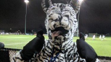 One for the ages: Moreland mascot Ziggy the zebra goes national at the FFA Cup match against Queensland's Magpies Crusaders.