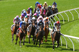 Punters placed bets on the 2020 Melbourne Cup from afar.