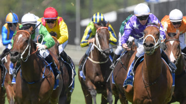 Party time: Fiesta, right, gets the better of  Estijaab  in the Inglis Sprint.