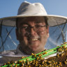 ACT biosecurity exercise protects Australia's $90 million bees