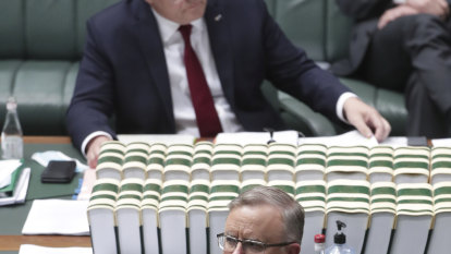 Cowardice: what Morrison and Albanese have in common on climate